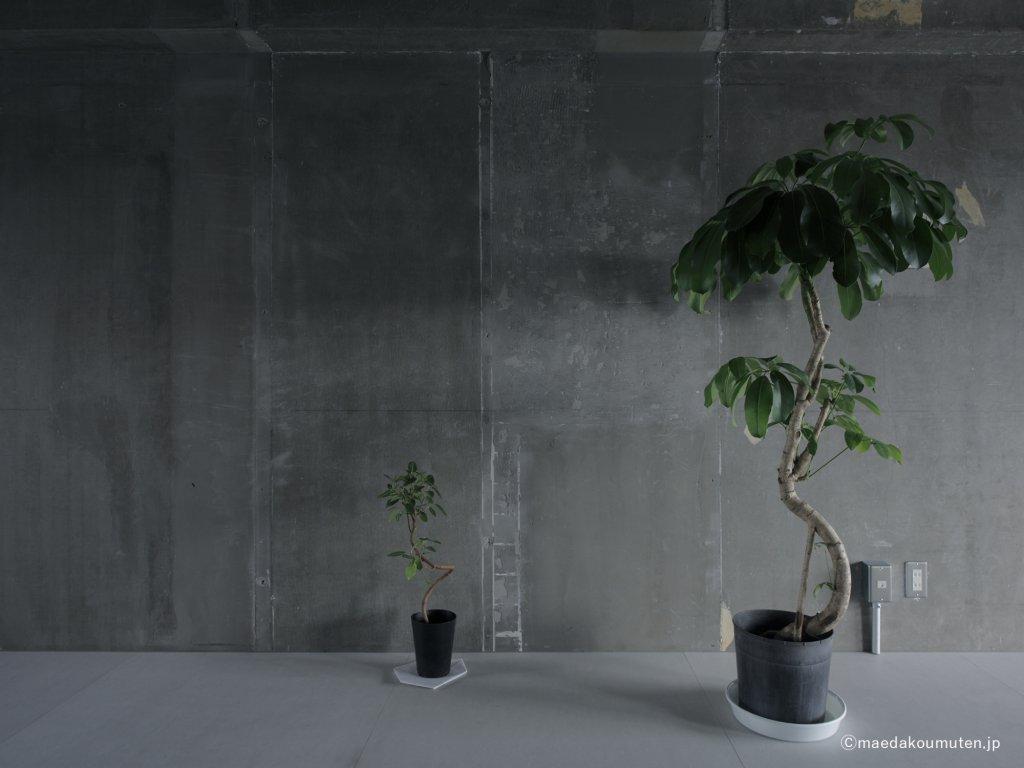 神奈川、注文住宅、前田工務店、一枚の壁、08